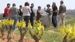 Tast a les vinyes del Celler Barbara Fores